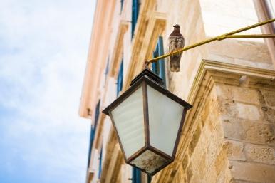 020 Dubrovnik 140812 Jessica Wyld