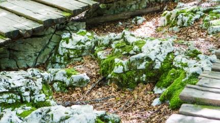 32-032 Plitvice 140818 Jessica Wyld