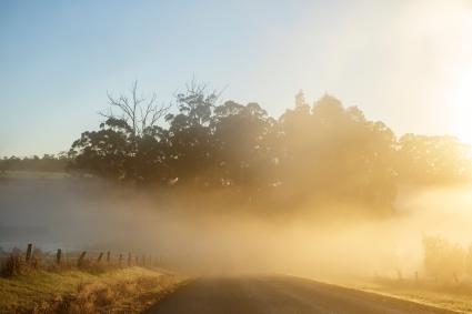 Dawn on Sunday